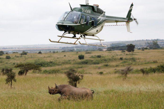 Kenya Air Service Wing