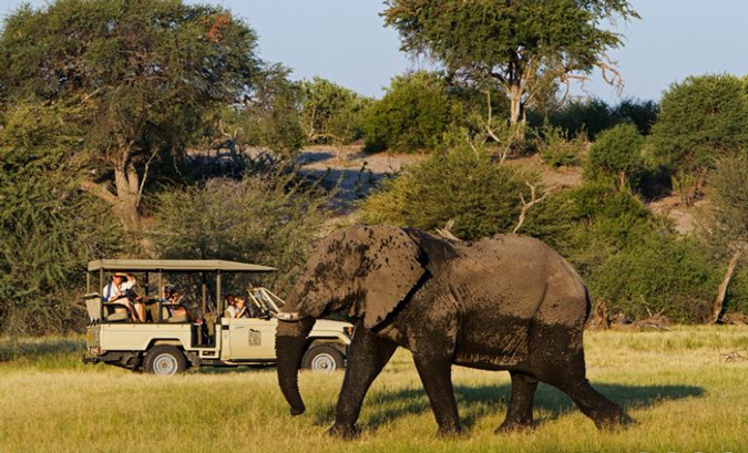 Family on Game Drive in Botswana